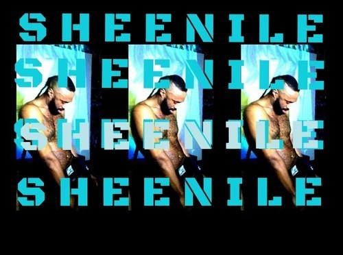 "#AUDIO: @WillSheridan – ""Sheenile"" (Senile Remix)"