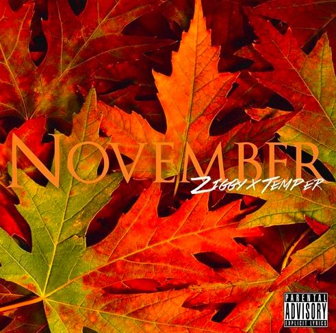 "#Audio: Ziggy FT @Temper3009 – ""November"" [@InHerDreams_]"
