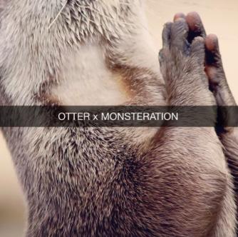 "#Audio: MONSTERATION – ""Otter"""
